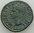 Ancients:Roman Imperial, Marcus Agrippa, Lieutenant of Augustus (died 12 BC). AE (3...
