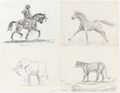 Original Comic Art:Illustrations, L. B. Cole - Animal Study Illustrations Original Art Group of 10(undated)....