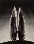 Photographs:Gelatin Silver, Ruth Bernhard (American, 1905-2006). Angelwing, 1943. Gelatin silver, printed later. 18-7/8 x 14-7/8 inches (47.9 x 37.8...