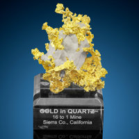 Crystallized Gold on Quartz 16 to 1 Mine, Alleghany Alleghany District Sierra Co. California, USA  ... (Total: 2 Items)