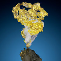 Crystallized Gold in Quartz Eagle's Nest Mine (Mystery Wind Mine) Sage Hill, Michigan Bluff District (Michigan Bluff