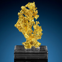 Crystallized Gold Eagle's Nest Mine (Mystery Wind Mine) Sage Hill, Michigan Bluff District (Michigan Bluff deposit)... (...