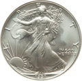 1991 $1 Silver Eagle MS70 NGC. NGC Census: (604). PCGS Population: (41). Mintage 7,191,066