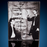 "James Watson & Francis Crick with a ""DNA"" Model Signed Photograph 8"" x 10"""