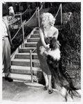 Movie/TV Memorabilia:Photos, Marilyn Monroe/Lassie Black and White Photo Made from Original Negative (1952).. ...
