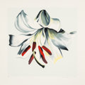 Fine Art - Work on Paper:Print, Lowell Nesbitt (1933-1993). White Lily on White, 1980. Serigraph in colors on wove paper. 32 x 32 inches (81.3 x 81.3 cm...