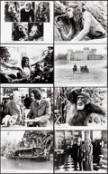 """Movie Posters:Adventure, Greystoke: The Legend of Tarzan, Lord of the Apes (Warner Brothers, 1983). Very Fine-. Presskit (9"""" X 12"""") with Photos (24) ... (Total: 2 Items)"""