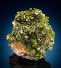 Minerals:Small Cabinet, Pyromorphite. Wheatley Mines, Phoenixville, Schuylkill Township, Chester Co., Pennsylvania, USA. ... (Total: 2 Items)