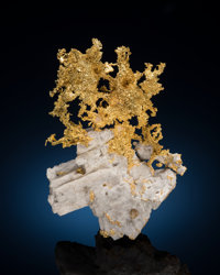 Native Gold on Quartz Eagle's Nest Mine, Sage Hill Michigan Bluff District, Placer Co. California, USA