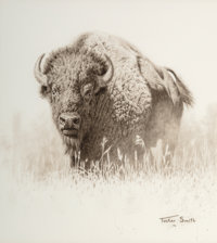 Tucker Smith (American, b. 1940) Bison, 1976 Pencil on paper 11-1/4 x 10 inches (28.6 x 25.4 cm) Signed and dated lo