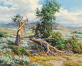 Paintings:20th Century, Clyde Aspevig (American, b. 1951). Fallen Tree. Oil on canvas. 27-3/4 x 29-3/4 inches (70.5 x 75.6 cm). Signed lower rig...