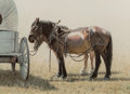 Works on Paper:20th Century, Tucker Smith (American, b. 1940). Waiting at the Wagon, 1980. Watercolor on paper. 12-7/8 x 18 inches (32.7 x 45.7 cm) (...