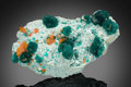 Minerals:Small Cabinet, Dioptase & Wulfenite. Mammoth-St Anthony Mine, St. Anthony Deposit, Tiger, Mammoth District, Pinal Co., Arizona, U... (Total: 2 Items)