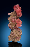 Minerals:Small Cabinet, Rhodochrosite. Uchucchacua Mine, Oyon Province, Lima, Peru. ... (Total: 2 Items)