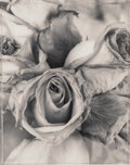 Photographs:Gelatin Silver, Ron van Dongen (Dutch, b. 1961). Rosa Raphael, 1996. Gelatin silver. 19 x 15-1/4 inches (48.3 x 38.7 cm). Signed and edi...