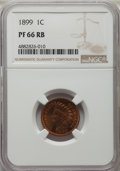 Proof Indian Cents: , 1899 1C PR66 Red and Brown NGC. NGC Census: (22/4). PCGS Population: (47/9). PR66. Mintage 2,031. ...