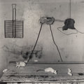Photographs:Gelatin Silver, Roger Ballen (American, b. 1950). Untitled (Mice on Table), 1999. Selenium toned gelatin silver, 2000. 14-1/4 x 14-1/4 i...