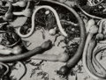 Photographs:Gelatin Silver, Brett Weston (American, 1911-1993). Kelp, 1954. Gelatin silver. 10-1/4 x 13-5/8 inches (26.0 x 34.6 cm). Initialed and d...