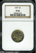 Proof Buffalo Nickels: , 1937 5C PR66 NGC....