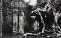 Photographs:Gelatin Silver, Marc Riboud (French, 1923-2016). Temple Gates and Giant Strangling Root Trees, Angkor, Cambodia (2 works). Gelatin s... (Total: 2 )
