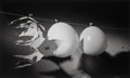 Photographs:Gelatin Silver, Dr. Harold Eugene Edgerton (American, 1903-1990). A Group of Seven High-Speed Flash Photographs (7 works). Gelatin silve... (Total: 7 )