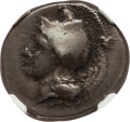 Ancients: LUCANIA. Velia. Ca. 340-300 BC. AR didrachm or stater (21mm, 7.48 gm, 1h). NGC VF 2/5 - 4/5