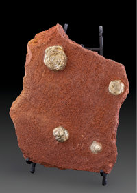 Marcasite Concretions in Matrix Daye China 11.42 x 9.84 x 2.36 inches (29.00 x 25.00 x 6.00 cm)  ... (Total: 2 Items)