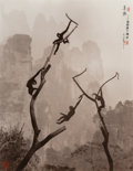 Photographs:Gelatin Silver, Don Hong-Oai (Chinese, 1929-2004). Gibbons at Play, Tianzi Mountain, 1986. Toned gelatin silver. 19-3/4 x 15-3/4 inches ...