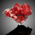 Rhodochrosite Good Luck Pocket, Main Stope Home Sweet Home Mine, Alma Colorado, USA