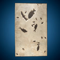 Fossils:Fish, Fossil Fish Mural. Phareodus sp., Notogoneus, Priscacara sp., Diplomystus & Knightia sp. . Eocene. Green River For...
