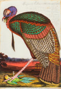 Prints:Contemporary, Walton Ford (b. 1960). Benjamin's Emblem, 2000. Etching with aquatint and drypoint in colors on wove paper. 35-3/4 x 23-...