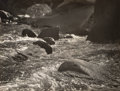 Photographs:Gelatin Silver, Cedric Wright (American, 1989-1959). A Group of Four Landscape Photographs (4 works). Gelatin silver. 6-1/8 x 8-1/8 inch... (Total: 4 )