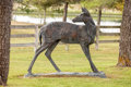 Fine Art - Sculpture, American, Kenneth Rodney Bunn (American, b. 1938). Whitetail Doe Looking Back, 1991. Bronze with verdegris patina. 64 inches (162....