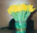 Prints:Contemporary, Gerhard Richter (b. 1932). Tulips (P17), 1995-2017. Diasec-mounted giclée print in colors on paper mounted on aluminum. ...