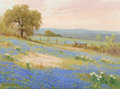 Fine Art - Painting, American, Porfirio Salinas (American, 1910-1973). Field of Bluebonnets Under a Morning Sky. Oil on canvas. 12 x 16 inches (30.5 x ...