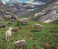Fine Art - Painting, American, Tucker Smith (American, b. 1940). Goats of Norway, 2004. Oil on canvas. 20 x 24 inches (50.8 x 61.0 cm). Signed and date...