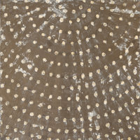 Ross Bleckner (b. 1949) Untitled (Study for Dome), 1990 Oil on linen 26 x 26 inches (66.0 x 66.0 cm)