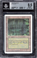 Memorabilia:Trading Cards, Magic: The Gathering Unlimited Edition Bayou BGS 8.5 (Wizards of the Coast, 1993)....
