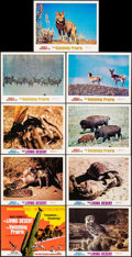 Movie Posters:Documentary, The Living Desert/The Vanishing Prairie Combo (Buena Vista, R-1971). Overall: Very Fine-. Lobby Card Set of 9 with Original ... (Total: 22 Items)