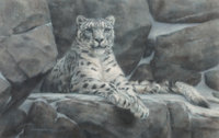 Bradley Parrish (American, 20th Century) Snow Leopard, 1991 Pastel on paper 21-1/2 x 33-1/2 inche