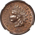 Indian Cents, 1873 1C Doubled LIBERTY, Snow-1, FS-101, MS64 Brown NGC....