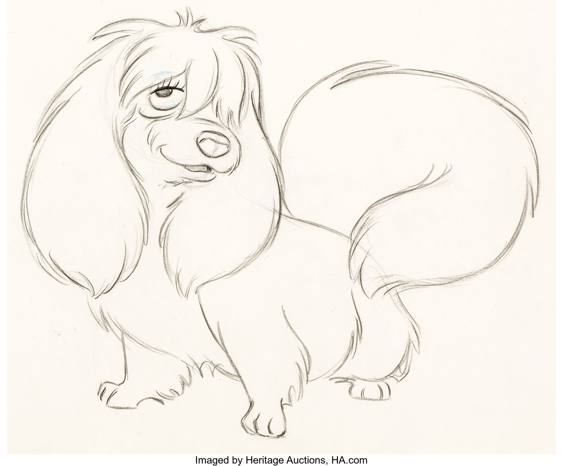 Lady And The Tramp Peg Animation Drawing Walt Disney 1955 Lot 12096 Heritage Auctions
