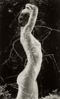 Photographs, Ruth Bernhard (American, 1905-2006). Symbiosis, 1971. Gelatin silver, printed later. 9-1/2 x 5-7/8 inches (24.1 x 14.9 c...