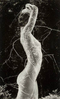 Ruth Bernhard (American, 1905-2006) Symbiosis, 1971 Gelatin silver, printed later 9-1/2 x 5-7/8 i