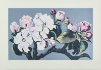 Lowell Nesbitt (1933-1993) Apple Blossoms, 1980 Serigraph in colors on paper 35-5/8 x 17-7/8 inch
