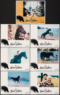 "Movie Posters:Adventure, The Black Stallion (United Artists, 1979). Overall: Very Fine. Lobby Cards (7) (11"" X 14""). . ... (Total: 7 Items)"
