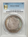1881 $1 MS66 PCGS. PCGS Population: (230/5 and 42/1+). NGC Census: (53/2 and 4/0+). CDN: $1,400 Whsle. Bid for NGC/PCGS...