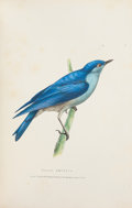 Books:Natural History Books & Prints, John Richardson. Fauna Boreali-Americana. London: 1829. First edition.... (Total: 2 Items)