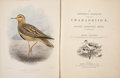 Books:Natural History Books & Prints, Henry Seebohm. The Geographical Distribution of the Family Charadriidae or the Plovers, Sandpipers, Snipes, and Their Al...
