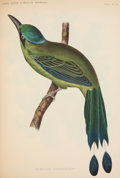 Books:Natural History Books & Prints, Spencer F. Baird (with John Cassin and George N. Lawrence). The Birds of North America. Philadelphia: J. B. Lippinco... (Total: 2 Items)